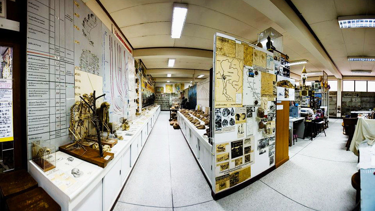 7 Unique Bangkok Museums You Should Visit At Least Once – Bangkok Forensic Museum